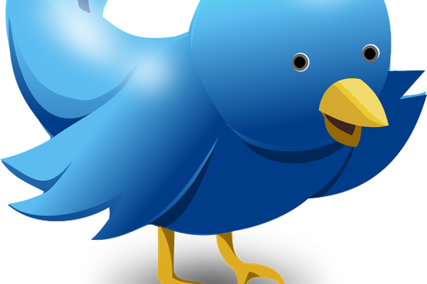 larry scheinfeld-twitter
